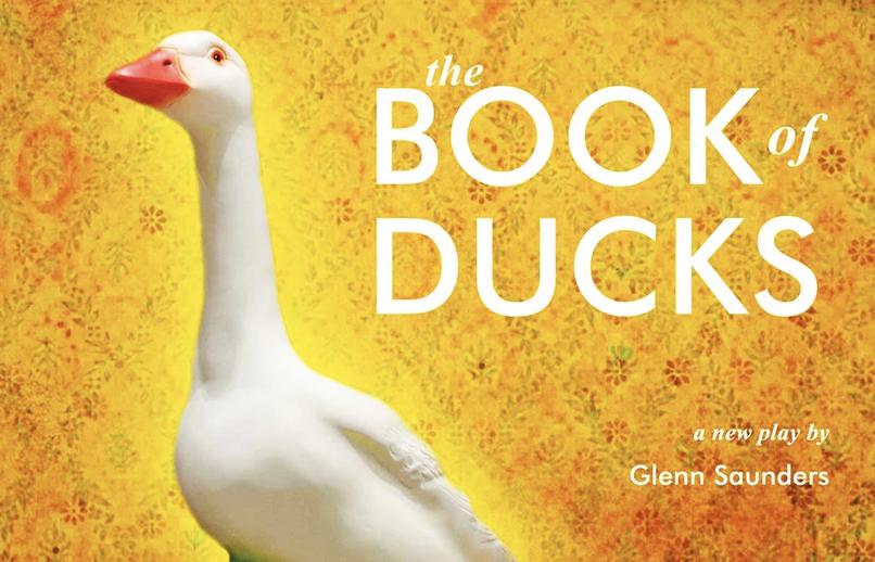 book of ducks 1
